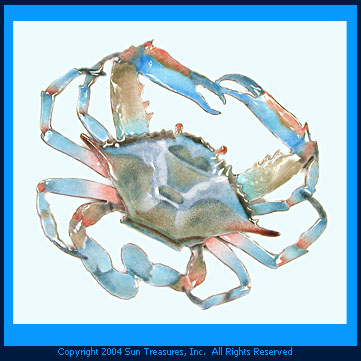 Blue Crab Wall Art. Bovano of Cheshire Sculpture. W189B